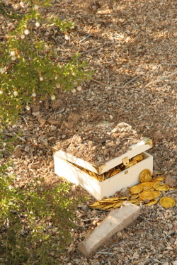 Buried_treasure_2